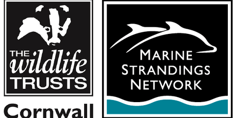 Marine Strandings Network - Hotline Coordinator training tickets