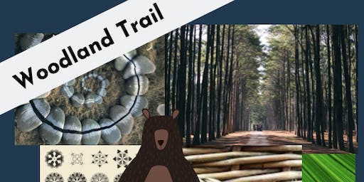 'Woodland Trail' Art Camp (ALL DAY)