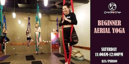 Beginner Aerial Yoga Class