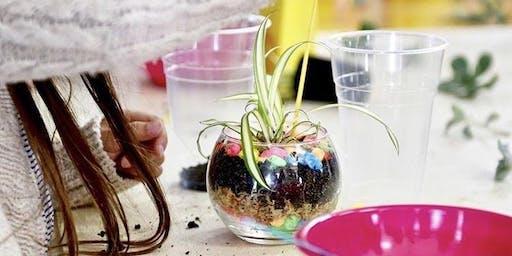 #016 Kids Terrarium Workshop - Paraburdoo