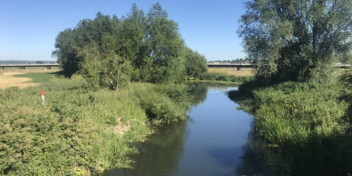 Chelmsford City's Secret Waterways 5.5 miles