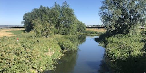 Chelmsford City's Secret Waterways 2.5 miles