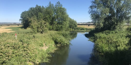Chelmsford City's Secret Waterways 5.5 miles