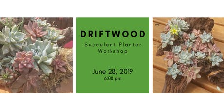 DIY: Creating with Driftwood - Succulent Planters! tickets