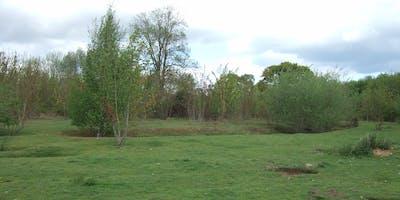 Springfield Lyons Bronze Age Enclosure Tours