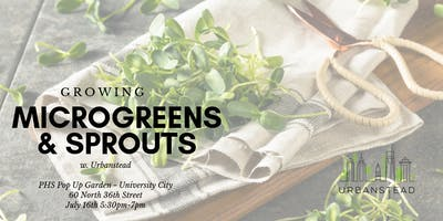 Growing Microgreens & Sprouts at PHS Pop Up Garden University City!
