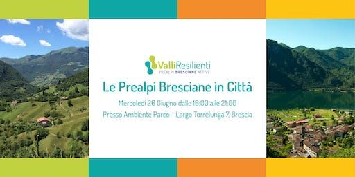 Le Prealpi Bresciane in Città