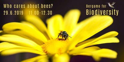 WHO CARES ABOUT BEES?