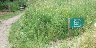 Marconi Ponds Nature Reserve - historical walking tours