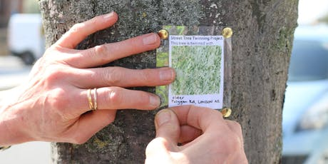 Rare Trees and Timber of Peckham: A 21C Beautification Tour tickets