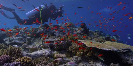 CHWB Cinema Club: Chasing Coral Documentary & Coral Reefs: Nurseries of the Sea Exhibit tickets