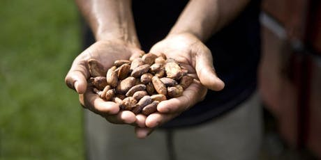 Taller de Cultivo de Cacao en Hacienda Jeanmarie Chocolat tickets