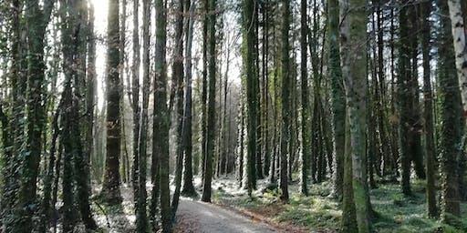 Walk & Talk in the Finn Valley
