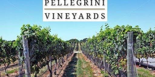 Long Island Singles Wine Tasting - Vineyards Lunch