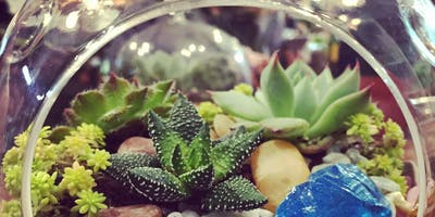 Terrarium Workshop - Sun, Sept 8th