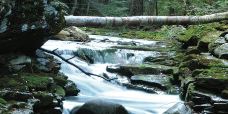Healing America's Streams, Dr. Margaret Palmer  tickets