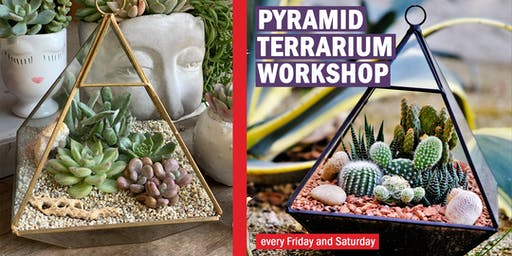 Geometry Terrarium DIY Workshop: Celebrating 5 Years with special prices