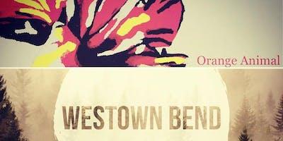 Orange Animal | Westown Bend | Taylor Lamborn