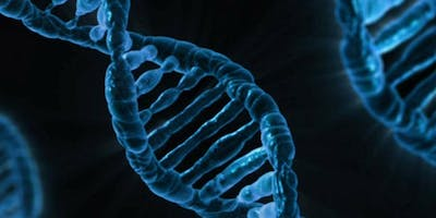The Basics of DNA Testing for Ancestry