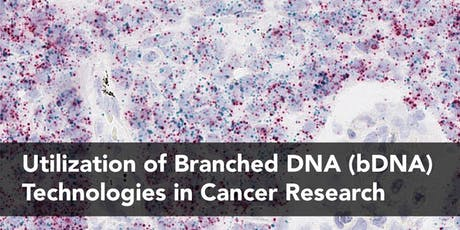 Utilization of Branched DNA (bDNA) Technologies in Cancer Research tickets