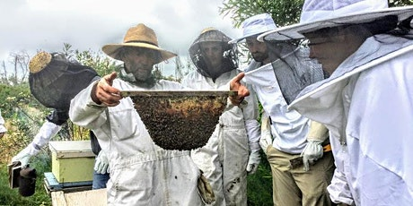 Beekeeping 2-Day Course tickets