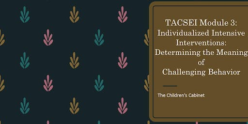 TACSEI: Module 3 Individualized Intensive Interventions: Determining the Meaning of Challenging Behavior