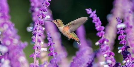 Hummingbird and Butterfly Garden Seminar tickets