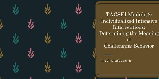 CANCELLED TACSEI: Module 3 Individualized Intensive Interventions: Determining the Meaning of Challenging Behavior