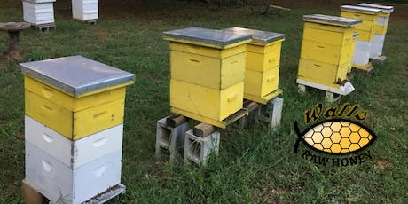 Beekeeping Basics: What you need to know to get started keeping bees. tickets
