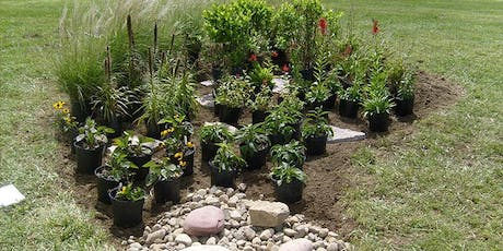 DRIP Lunch and Learn Session #3  - Building Rain Gardens tickets