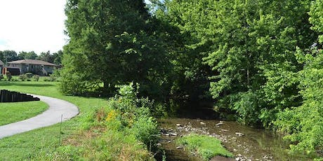 DRIP Lunch and Learn Session #4  - Managing Backyard Streams tickets