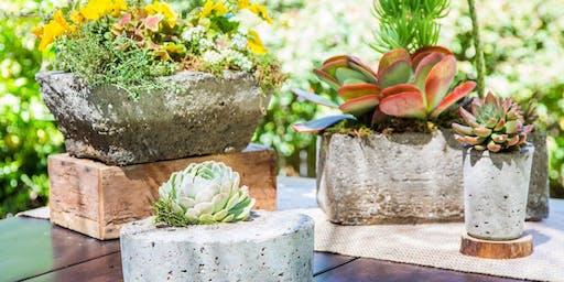 Teen & Adult Hypertufa Class (Artificial Stone Garden Container)