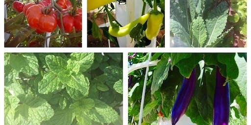 Tower Gardening Workshop- AEROPONIC GARDENING