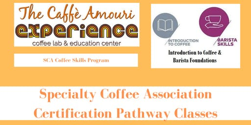 Specialty Coffee Association Certification Pathway Classes