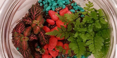 Terrarium workshop in London with Prosecco tickets