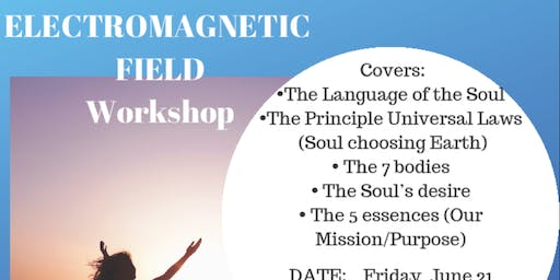The Electromagnetic Field Workshop (Cash Fee to be paid at the door ONLY)