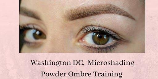 Effortless 10 Microshading Ombre Powder Training Washington DC. July 20