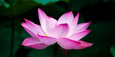 Mantra Meditation Series  @ the Crofton Library June 11, July 30, August 20