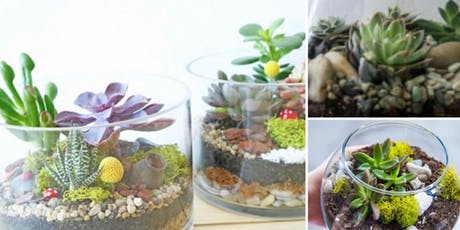 Make your own mini-succulent terrarium tickets