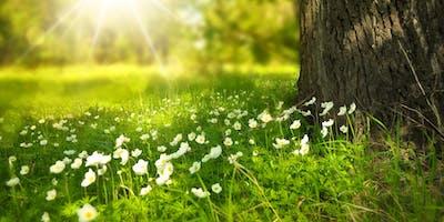 108 Saluti al Sole - Giornata Mondiale dello Yoga
