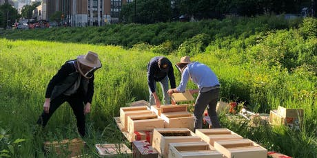 Inauguration du BeeLab Nectar au LabVI Montréal billets