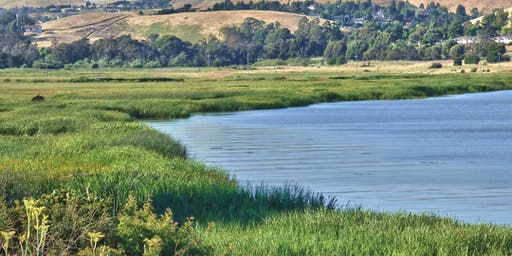 Solano County: Hike the Benicia-Vallejo Buffer Trail