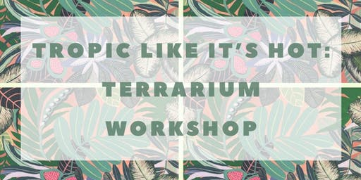 TROPIC LIKE IT'S HOT: Beginners Terrarium Workshop