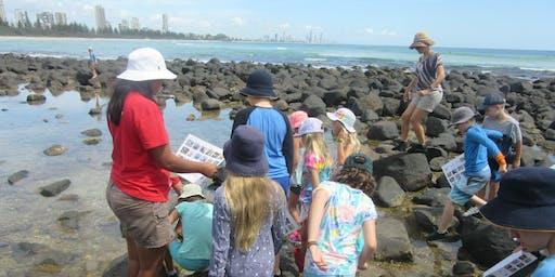 Marine Biologist Field Day(Coastal forests, rocky shores & microplastics)