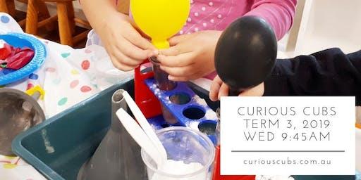 Curious Cubs Term 3, 2019 - Wednesday 9:45am (10 weeks)