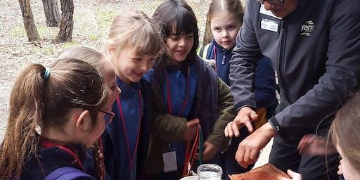 Junior Rangers Bendigo Dreaming, a NAIDOC week activity - Greater Bendigo National Park