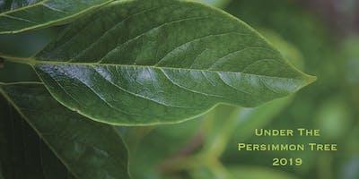 Under The Persimmon Tree: Jaci Pappas