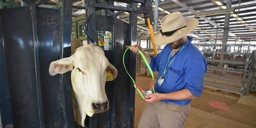 Agri-Tech Goes Hunter - GPS Cows Workshop (Twilight)