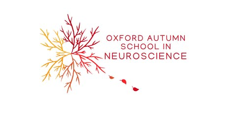 Oxford Autumn School in Neuroscience 26th - 27th September 2019 tickets
