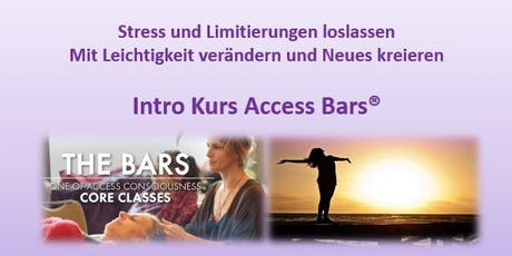 Kostenfreier Intro-Kurs Access Bars via Zoom Tickets